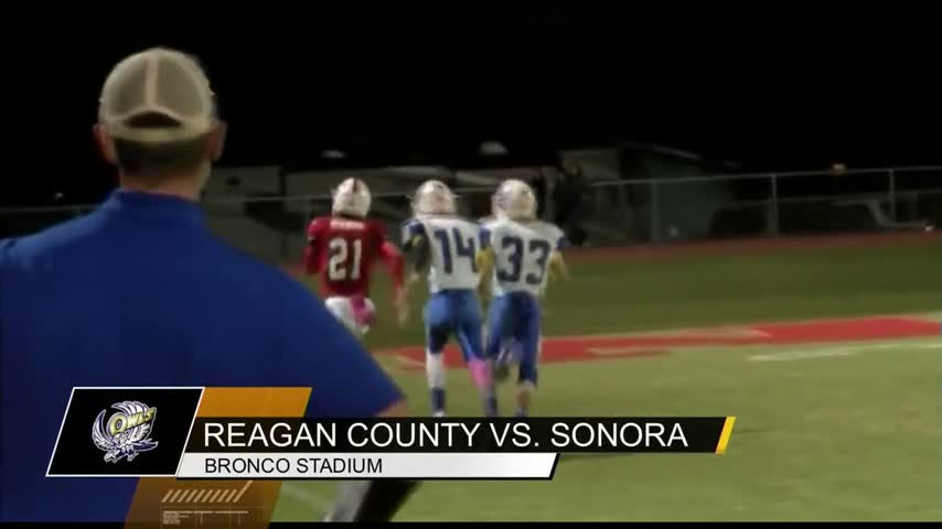 Reagan County and Sonora_70375843
