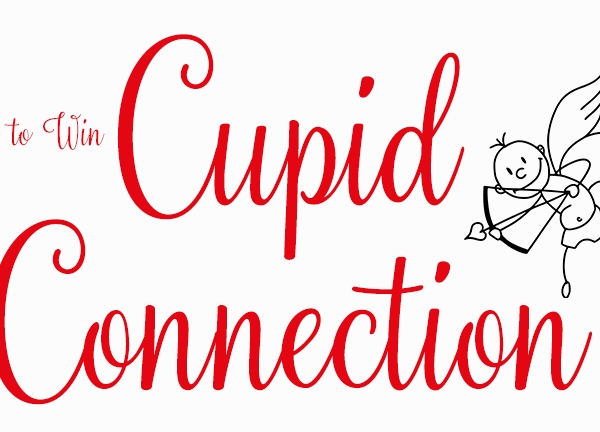 Cupid Connection 2018 story image_1517599136877.JPG.jpg